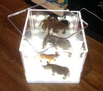 Boîte lumineuse SYNAS (hé oui!): Boîte lumineuse à DEL sur laquelle on peut dessiner, déposer des oeuvres, on peut faire une petite exposition dedans, jouer avec les couleurs avec des jouets transparents. Il se vend aussi, sur Internet, des radiographies d'animaux qui peuvent être intéressantes à explorer avec un tel jouet! Bon ok, un peu plus que 30$, mais pas loin!