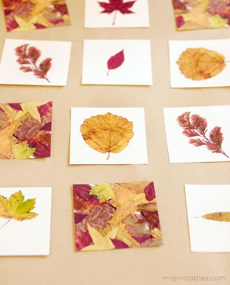 Autre jeu de mémoire, cette fois-ci avec des feuilles pour l'automne. www.mrprintable.com